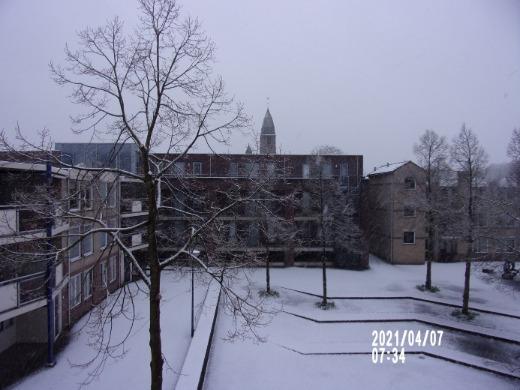 Sneeuw in Driebergen