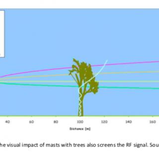 5G en bomenkap