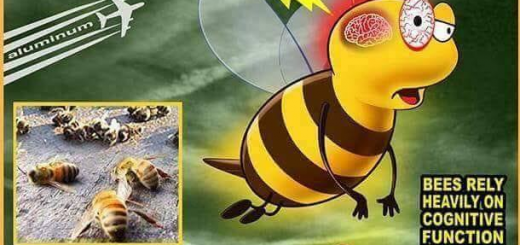 Bijensterfte en aluminium